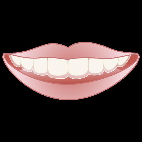 岡山県瀬戸内市内の歯医者 おさふねフレンド歯科 矯正 マウスピース矯正